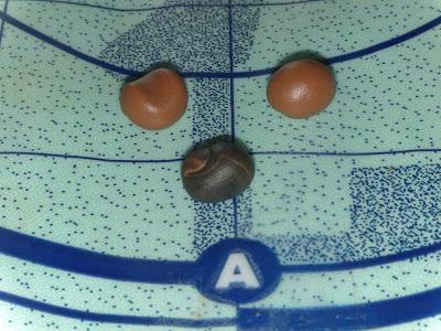 Fimo Anleitung Ohrringe und Anhänger Donut Blog Foto4