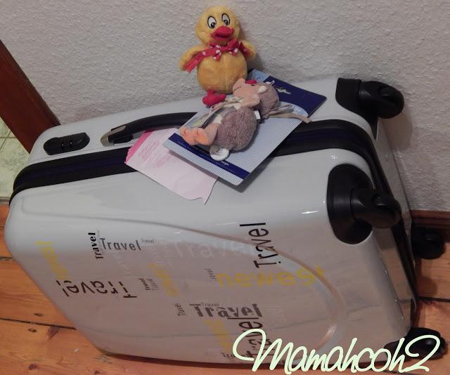SSW40 Bild Koffer bereit