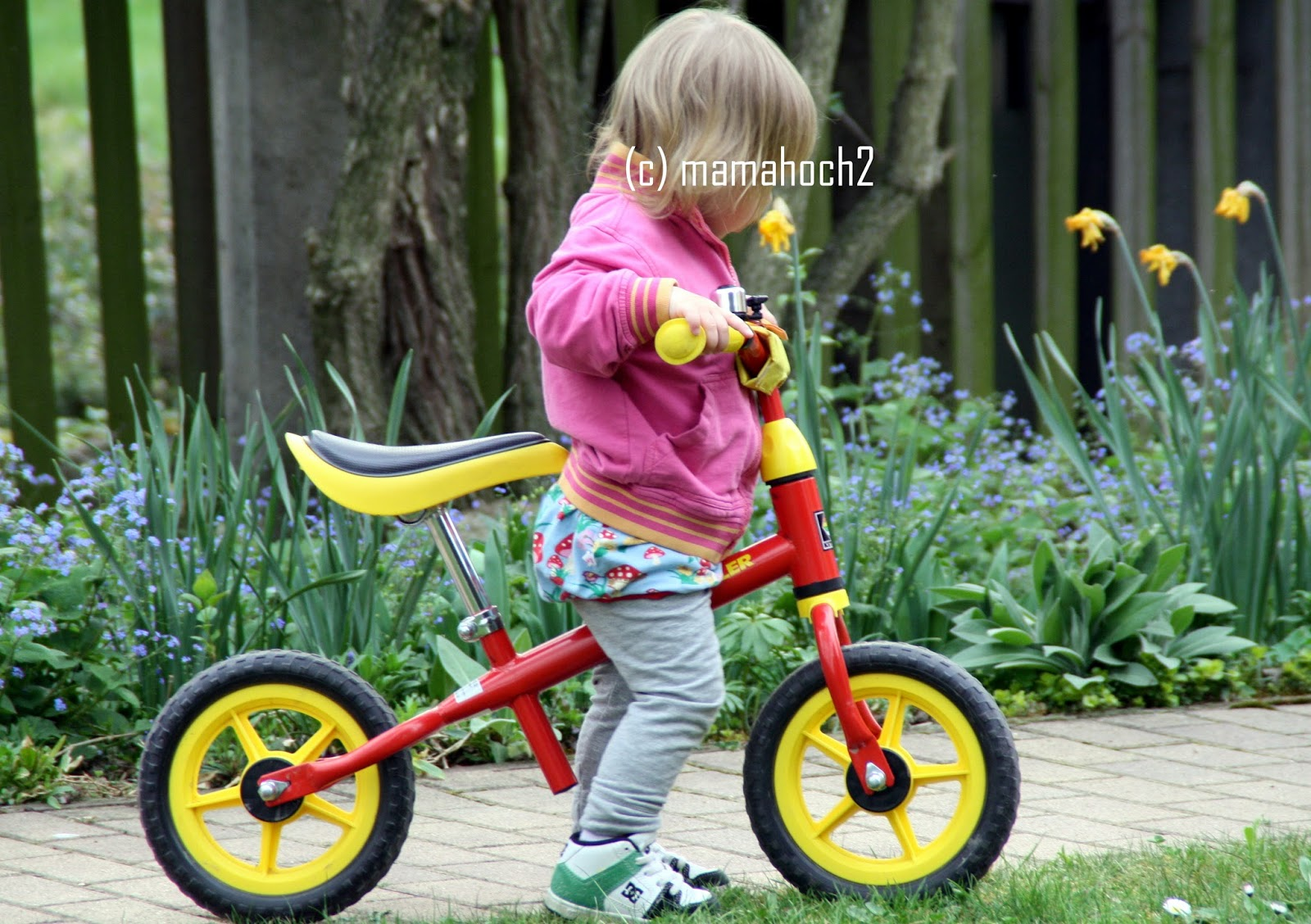 Motte und ihr Laufrad