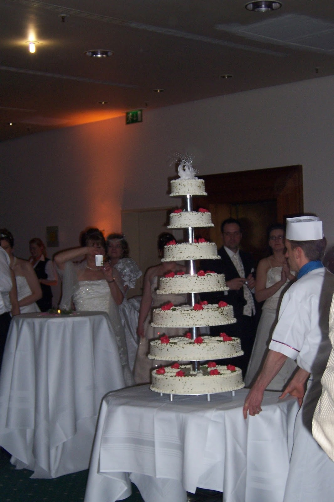 Hochzeitsspecial Gastbeitrag Tanja Brautkleiderbälle4