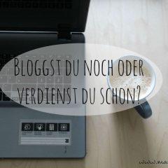 Mit dem Blog Geld verdienen…ein ehrlicher Blick hinter die Kulissen