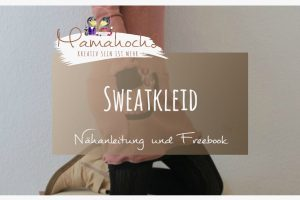 Sweatkleid nähen freebook