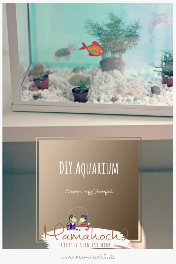 Aquarium zum selbermachen – Seestern trifft Betonfisch