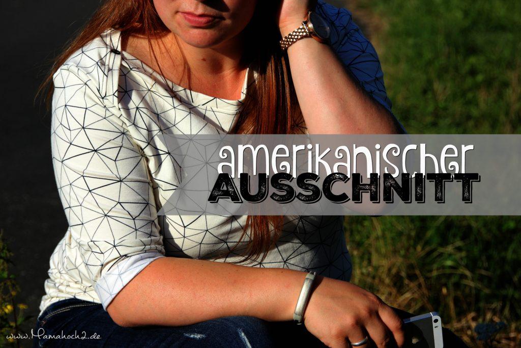 amerikanischer Ausschnitt 14