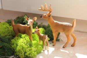 herbst-naturmaterialien-montessori-2