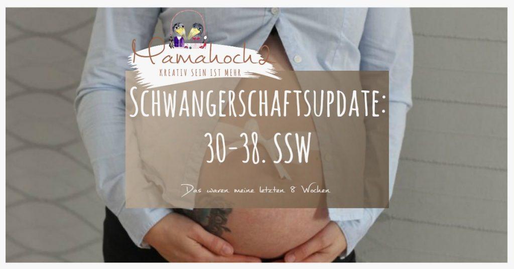 Blog Schwangerschaftsupdate 30-38. SSW