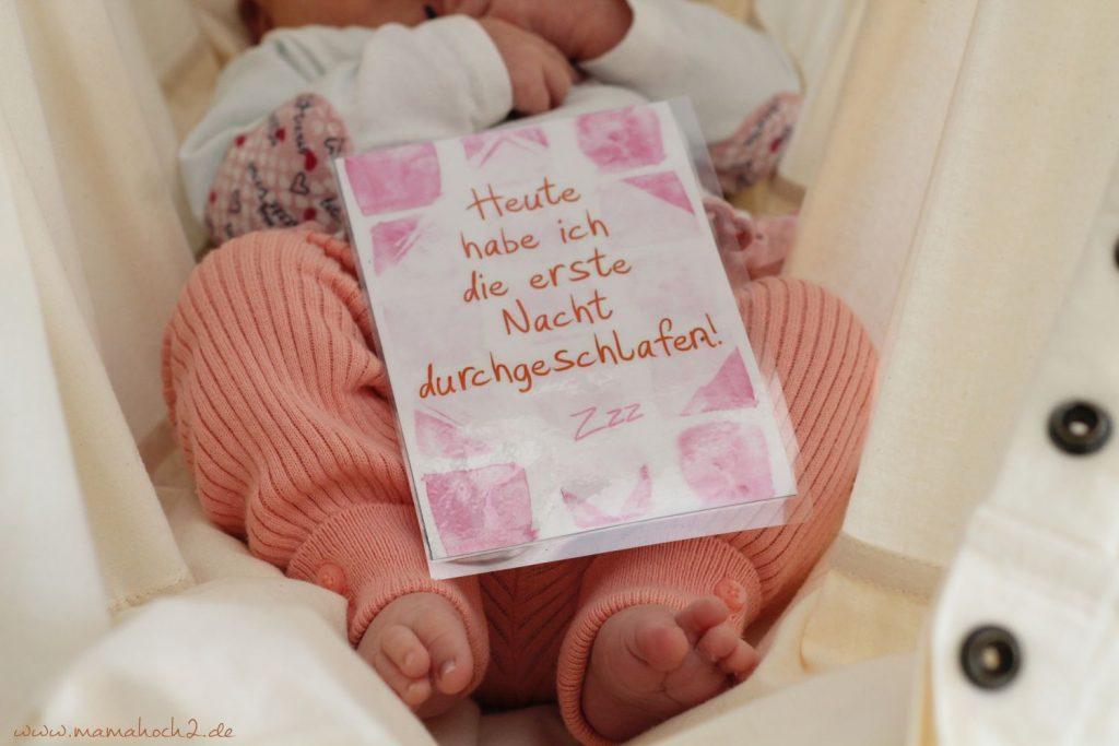 Baby Meilensteinkarten (1)