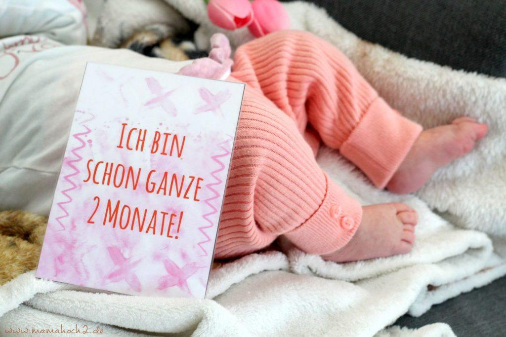 Baby Meilensteinkarten (3)
