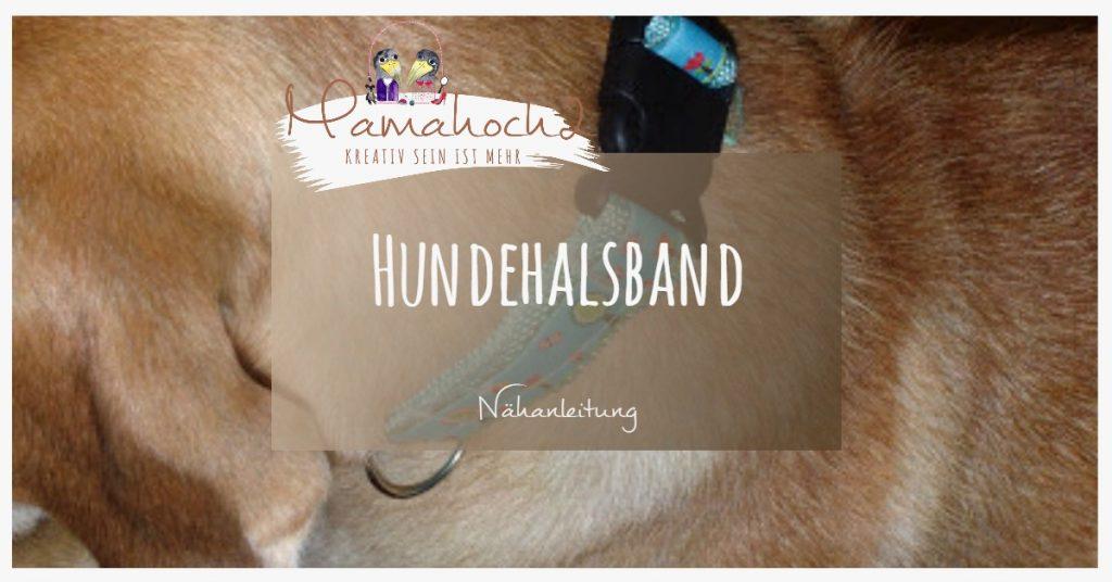 Hundehalsband selbst gemacht auch plüschtiertauglich ⋆ Mamahoch2
