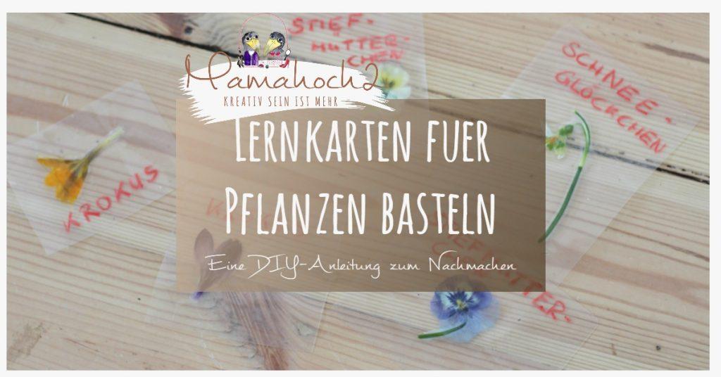 lernkarten pflanzen montessori lernen pflanzen frühblüher