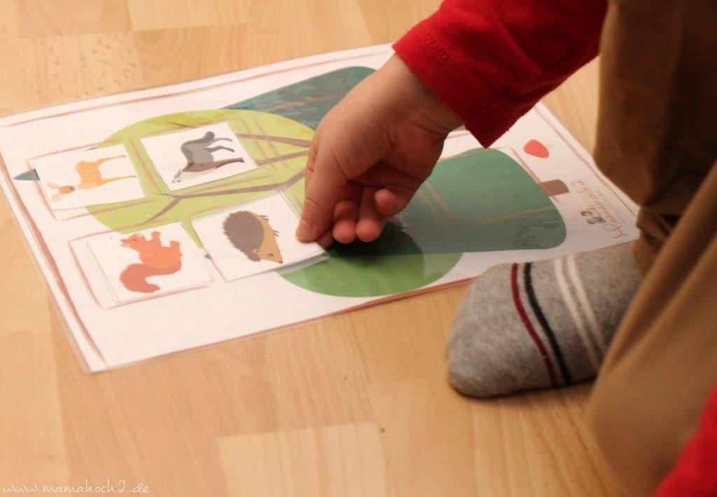 montessori zu hause montessoriathome legespiel tierspiel zuordnungsspiel tierordnung lernen übungen kindergarten (2)