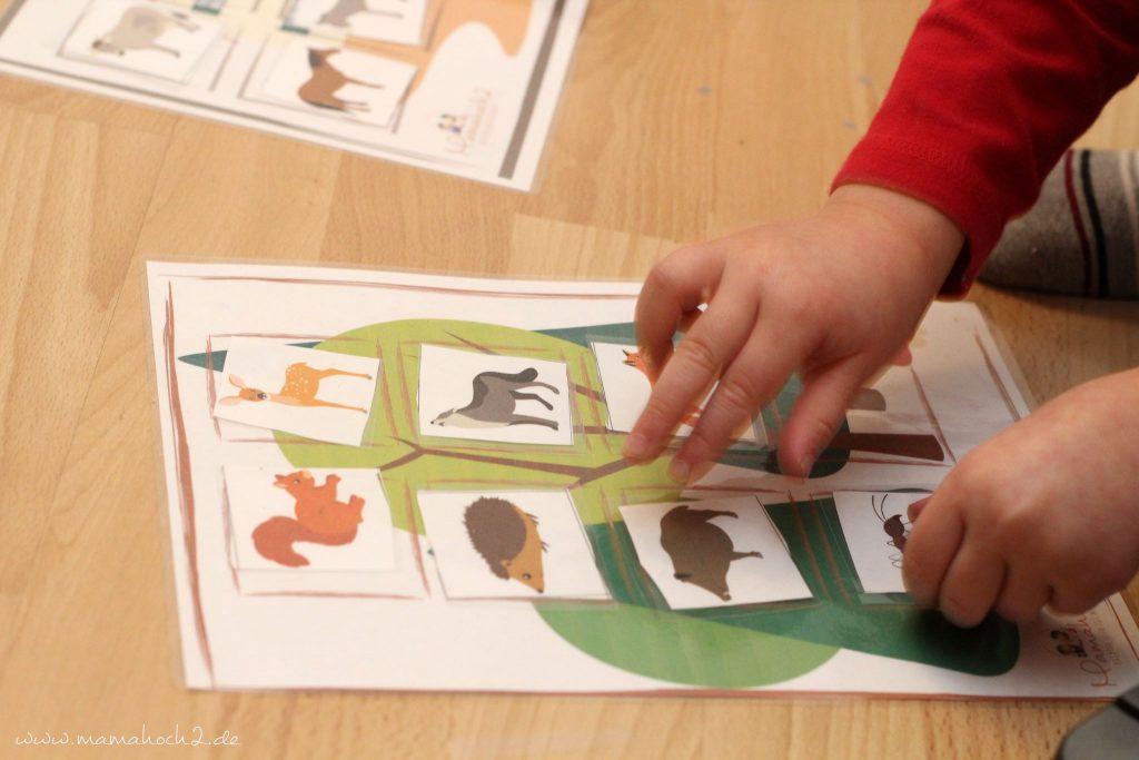 montessori zu hause montessoriathome legespiel tierspiel zuordnungsspiel tierordnung lernen übungen kindergarten (3)