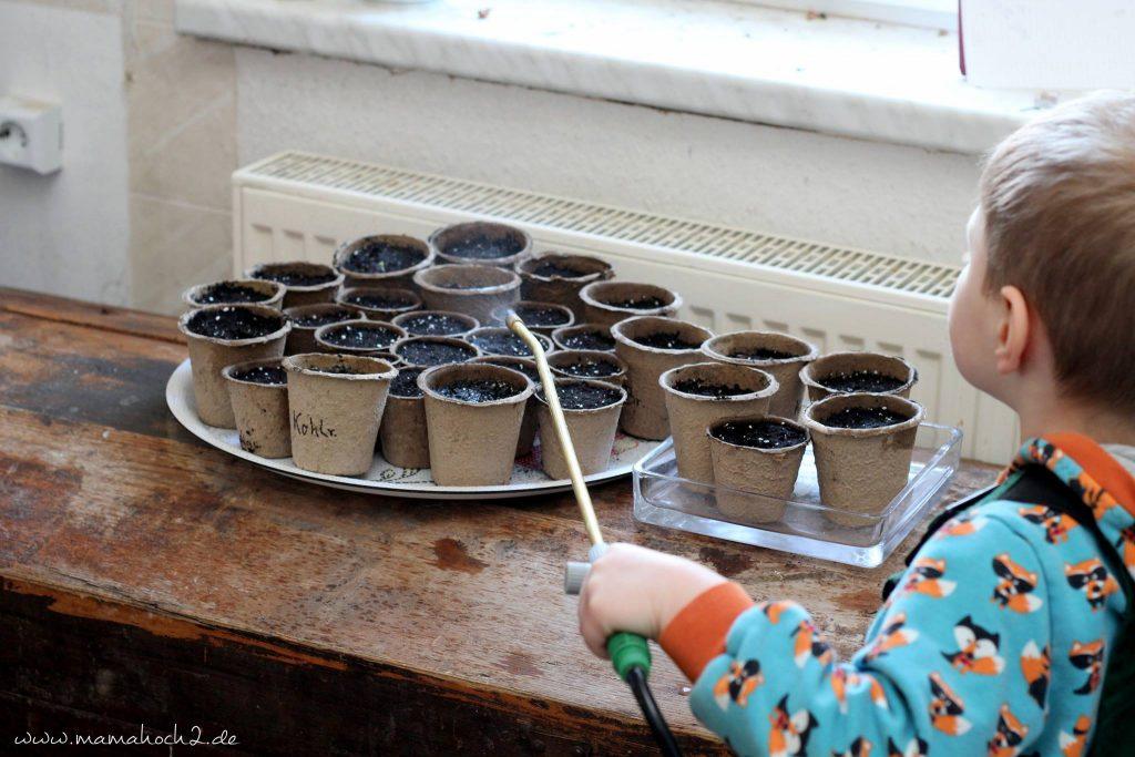 pflanzen züchten gärtnern montessori