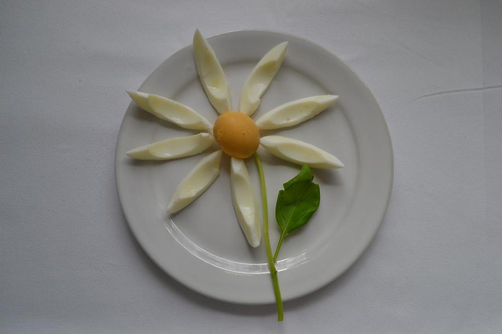 Foodteller . Essen für Kinder . dekorierte Teller 10