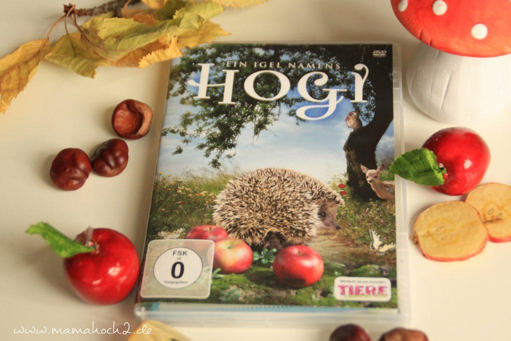 DVD Tipps, Kinderfilme, Ein Igel namens Hogi