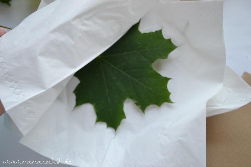 Transparentes Herbstbild – getrocknete blätter als Deko – Herbstdekoration (17)