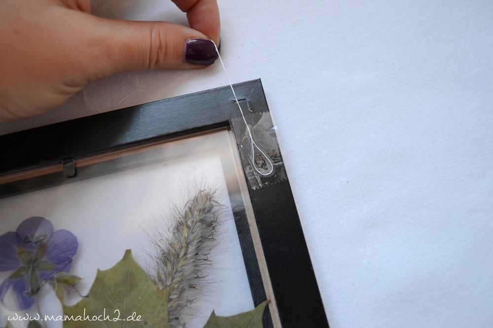 Transparentes Herbstbild – getrocknete blätter als Deko – Herbstdekoration (25)