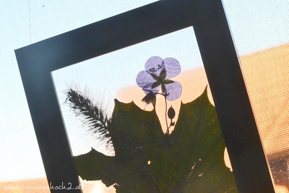 Transparentes Herbstbild – getrocknete blätter als Deko – Herbstdekoration 26