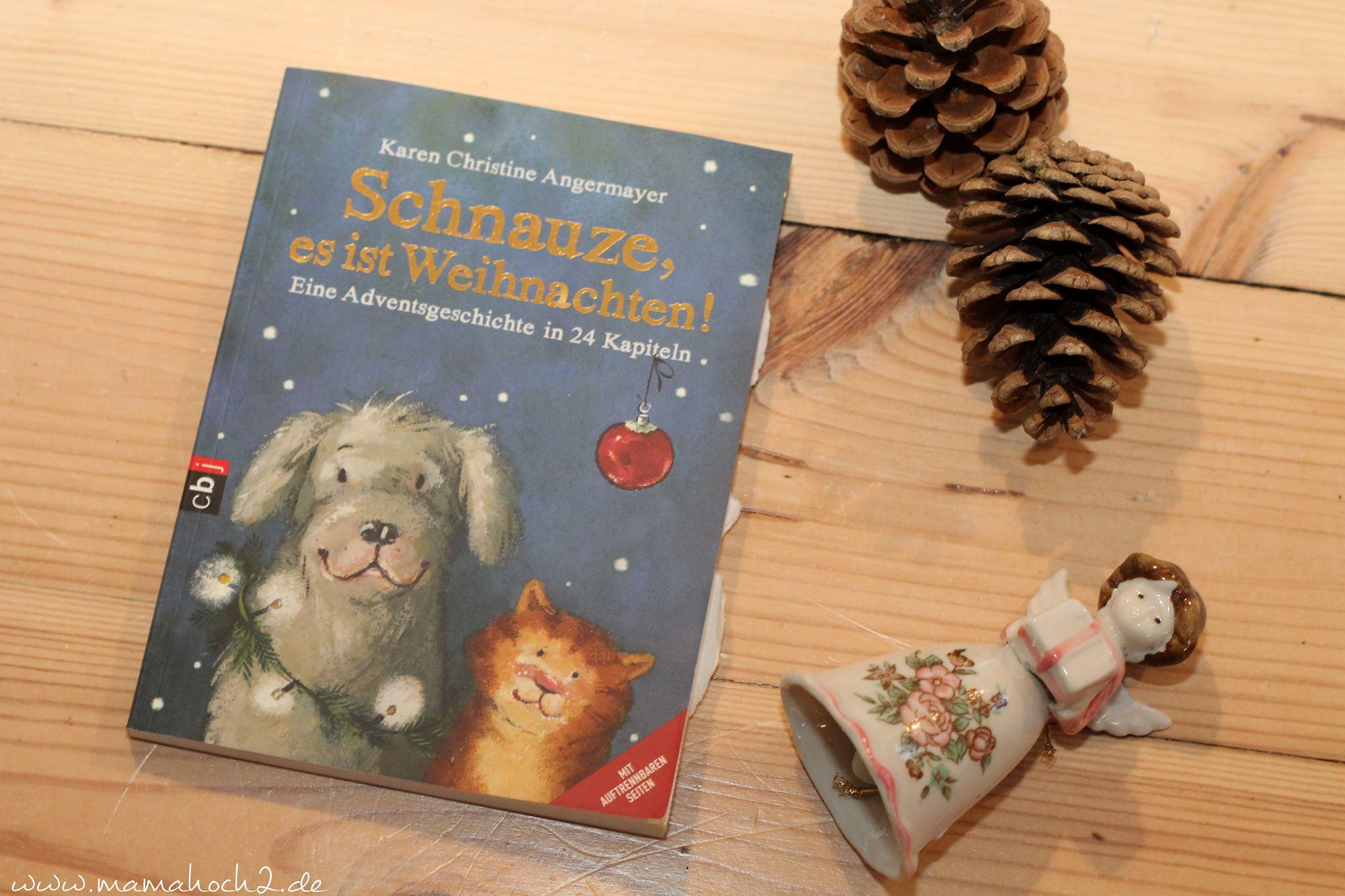 Weihnachtsbücher weihnachten bücher (5) schnauze es ist weihnachten.jpg