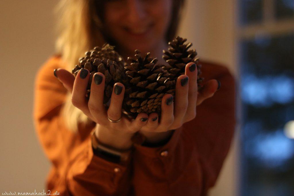 diy blog kinder basteln zapfen weihnachten (11)