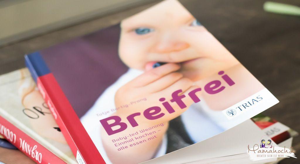 breifrei breistart beikost baby brei breieinführung mamablog (1)