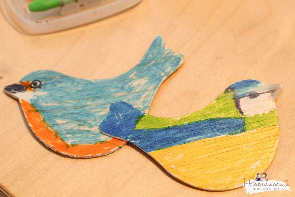 heimische vogelarten kinder lernene diy vögel bestimmen naturdetektive (2)